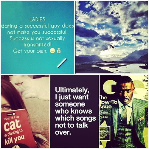 Madewithinstapicframesapp using Instagrampics think now I can sleep.. Cats Idris advice sky humor
