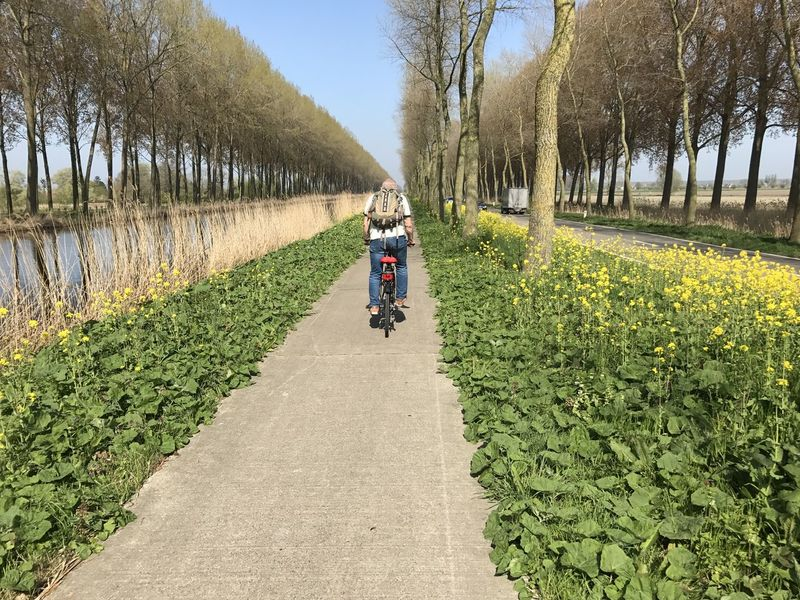Adult Adults Only Beauty In Nature Day Flower Full Length Growth Men Nature Only Men Outdoors People Rear View Riding Road Rural Scene Sky The Way Forward Transportation Tree