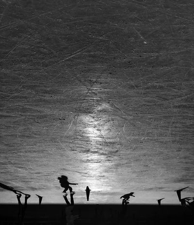 Silhouette Real People Outdoors TheMinimals (less Edit Juxt Photography) Blackandwhite Winter