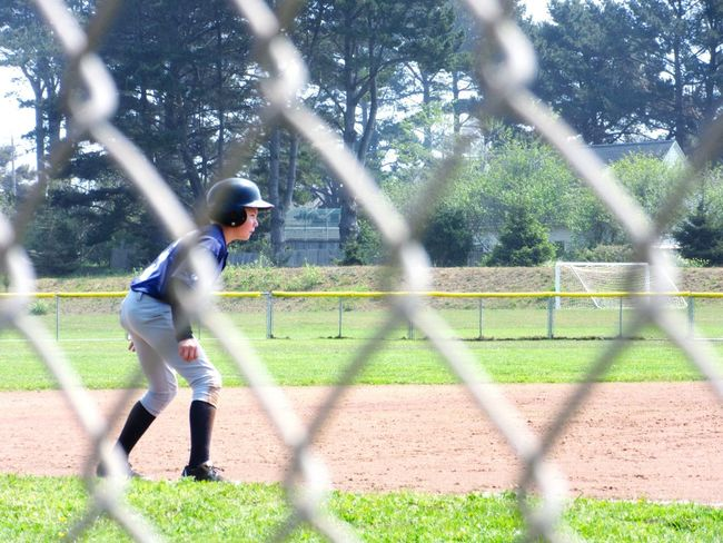 Baseball Spring Into Spring Sports My Kids