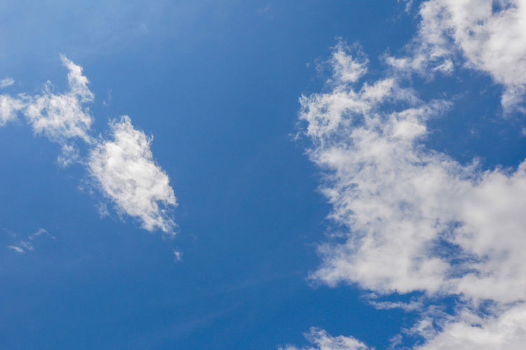 Cloud - Sky Sky Blue Low Angle View Beauty In Nature Tranquility No People Day White Color Nature Backgrounds Scenics - Nature Tranquil Scene Outdoors Idyllic Full Frame Cloudscape Sunlight Meteorology Environment Clean