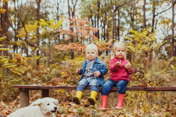 Cute kids sitting on bench at park during autumn