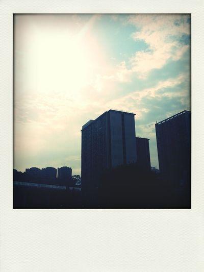 Lovely Sunshine