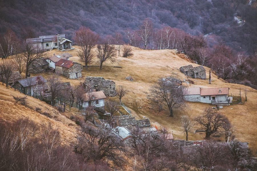 Village View Village Mountain Tree Bare Tree No People High Angle View Built Structure Day Outdoors Architecture Landscape Mountain Nature Shades Of Winter