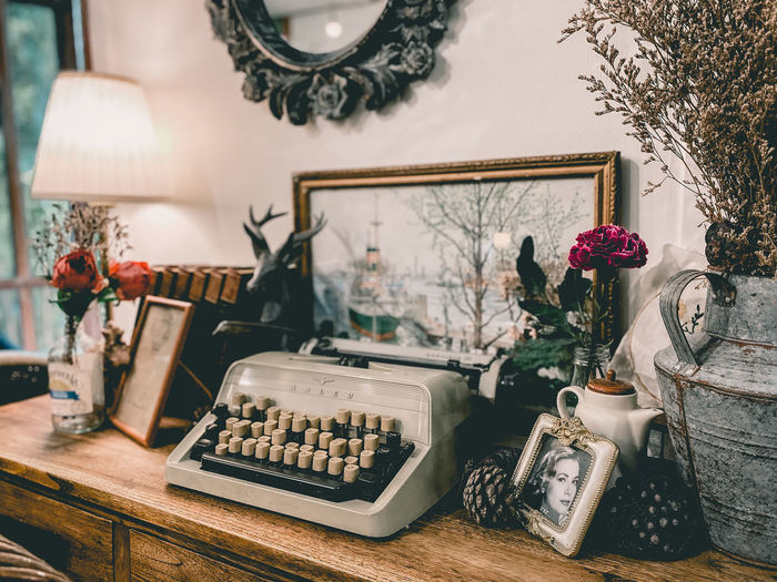 Potted plants on table with typewriter at home