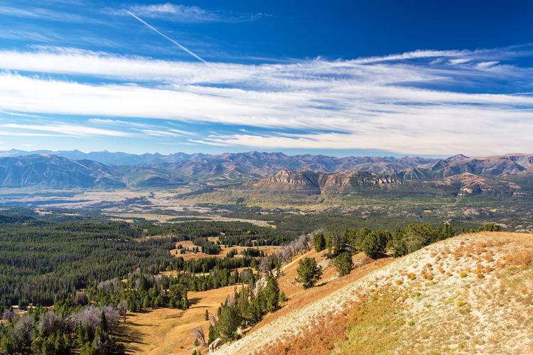 Beautiful mountain landscape as seen from Clay Butte near Yellowstone National Park in Wyoming BigHorn Buffalo Grass National Park Nature Road Scenic Trees USA View Wyoming Countryside Dirt Environment Forest Gravel Landscape Mountain Mountains Range Scene Scenics Terrain Tree Wilderness