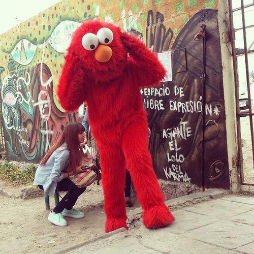 Elmo en las Ratas ?????? Unap Instaiquique_official instachile chile iquique
