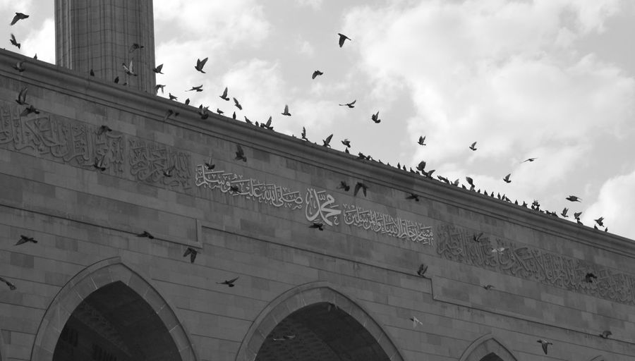 Mohammad Al-Amin Mosque, Beirut Architecture Bird Black And White Building Built Structure Flock Of Birds Flying Outdoors