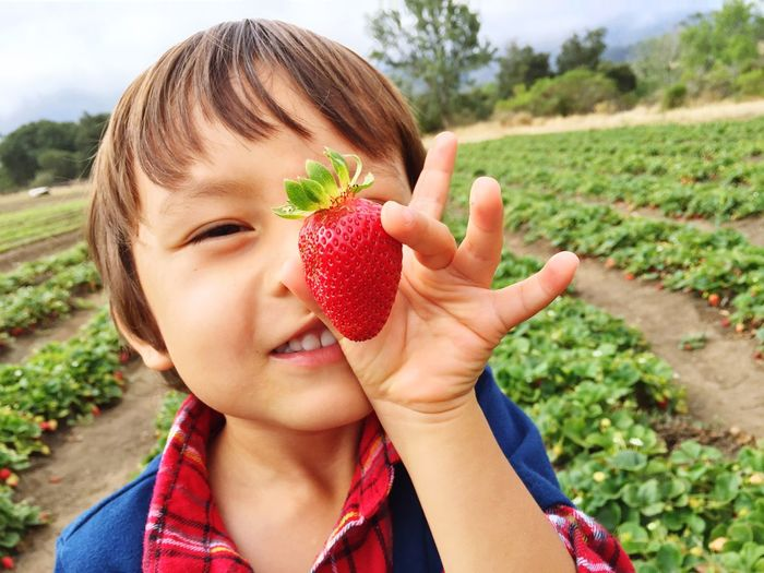 Sweet strawberry Strawberry One Person Fruit Healthy Eating Day Real People Red Outdoors Food And Drink Holding Freshness Focus On Foreground Childhood Food Close-up Growth Girls Healthy Lifestyle Nature Human Hand