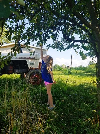 Childhood Girls Child Children Only One Girl Only One Person Tree Elementary Age Outdoors Grass Standing EyeEmBestPics EyeEm Best Shots - Nature EyeEm Country Life Appletree Picking Apples Beauty In Nature Greenery Green Apple Tree