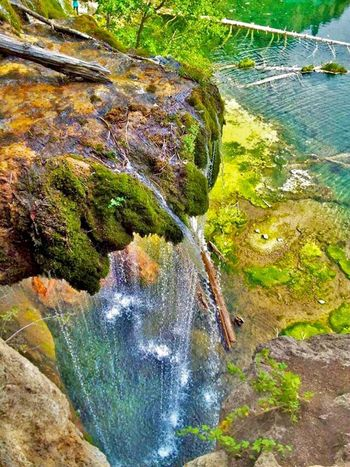 """""""A good photograph is knowing where to stand"""" ~ Ansel Adams Nature Tranquil Scene Beauty In Nature Tranquility Rock - Object River Water Scenics Outdoors Day Moss No People Waterfall Tree EyeEmNewHere"""