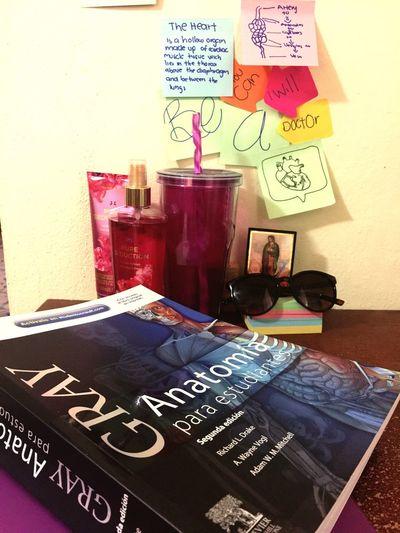 Study Hard 📖