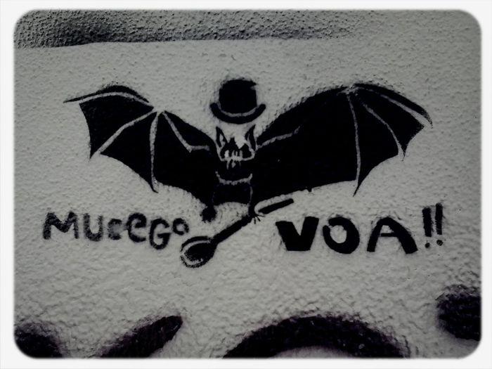 mucego voa Graffiti Porto