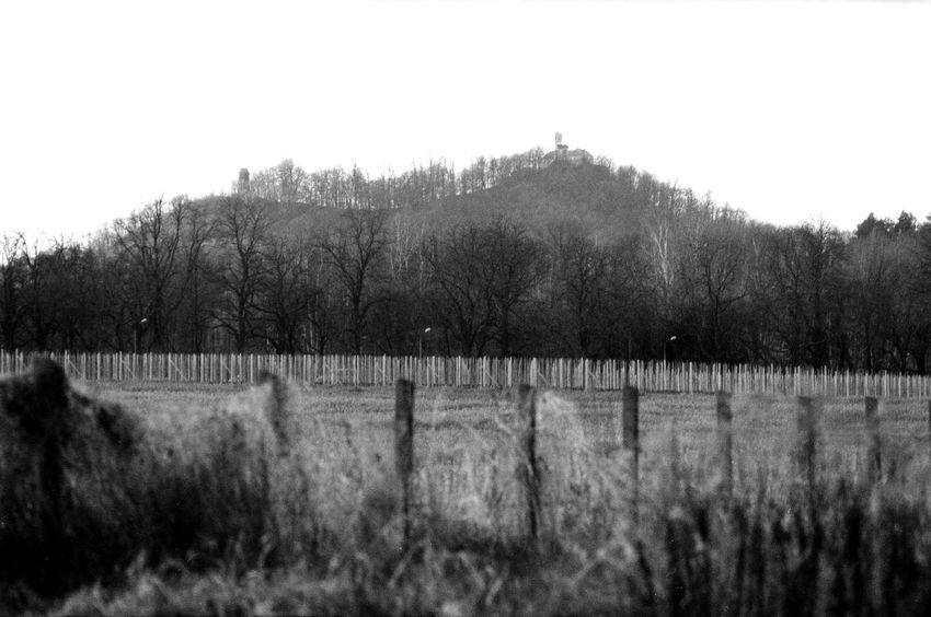 Landskrone Location: Am Bahnhof Weinhübel Praktica MTL 5 | APX 100 -> 200 | D-76 AgfaPhoto APX 100 (new) Blackandwhite Cold EyeEm Best Shots - Black + White Kodak D-76 Monochrome Praktica MTL 5 Wood