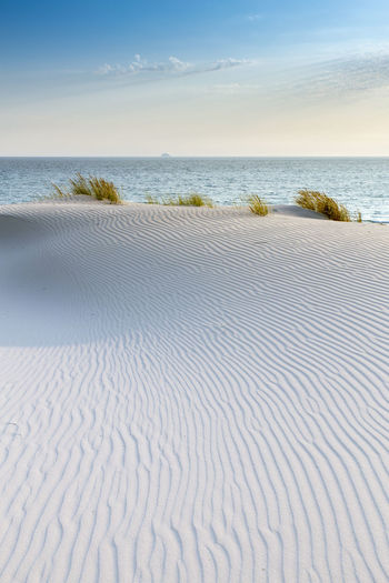 Sand dunes near Porto Pino, amazing marina resort in Sardinia, Italy Beach Beauty In Nature Day Italy Italy❤️ Nature Sand Sand Dunes Sardegna Sardinia Sardinia Sardegna Italy  Sardinia,italy Scenics Sky Tranquil Scene Tranquility The KIOMI Collection