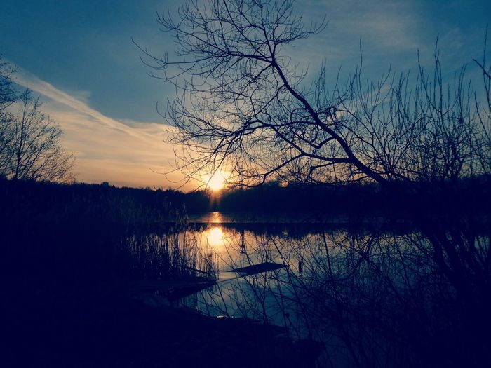 https://youtu.be/FqhjaUd0EYo Still Winter Tranquility Tranquil Scene Simple Beauty Beauty In Nature Simple Photography For My Friends 😍😘🎁 Lucky Me🦄 Happy Moment♥ Forever Thankful💕 Mood Captures Evening Light Nature Is My Sanctuary 🌳💚 Nature Is My Religion Dreaming... Lakesideview My Lake😍 Bird Tree Water Sunset Lake Silhouette Reflection Sky