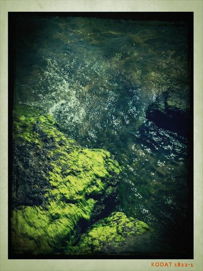 Sandbanks Picton   Moss  Rock #water #summer