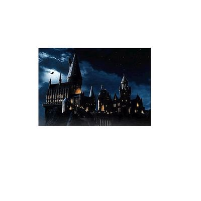 hogwarts school of witchcraft and wizardry .? i seriously would want to go ?? ,