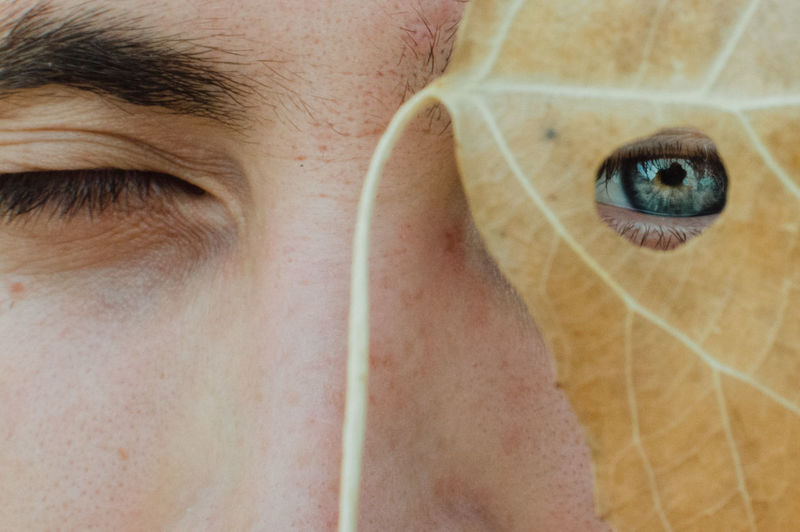 Close-Up Portrait Of Young Man Looking Through Leaf