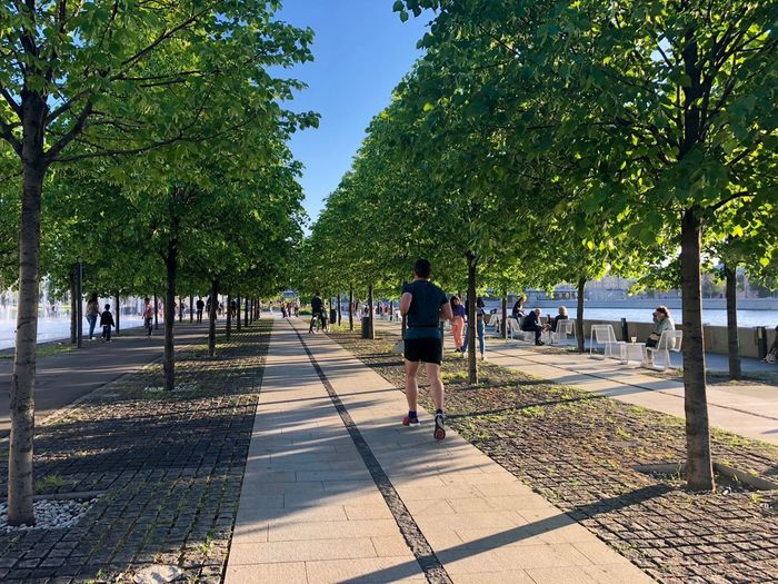 Moscow Muzeon Path Running City Diminishing Perspective Footpath Full Length Incidental People Men Moscow Life Muzeonpark Nature Outdoors Park Park - Man Made Space Pathway Paving Stone Sport Street Sunlight The Way Forward Tree Treelined Walking The Great Outdoors - 2018 EyeEm Awards