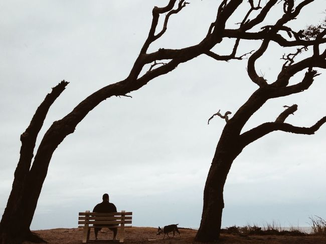 Rest and VooDoo. The EyeEm Facebook Cover Challenge Silhouette Shootermag Huffington Post Stories