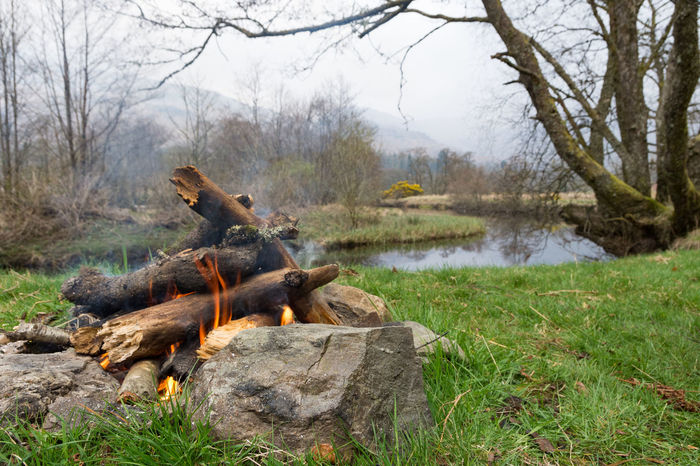 A warm camp fire takes the chill away after a cold night camping Nature Day No People Outdoors Grass Tree Beauty In Nature Water Rural Scene Picturesque Tranquility Highlands Of Scotland West Highland Way Camp Fire Flames Burning Lifestyle River Ardlui Camping Adventure Exploration Scotland Nature Plant