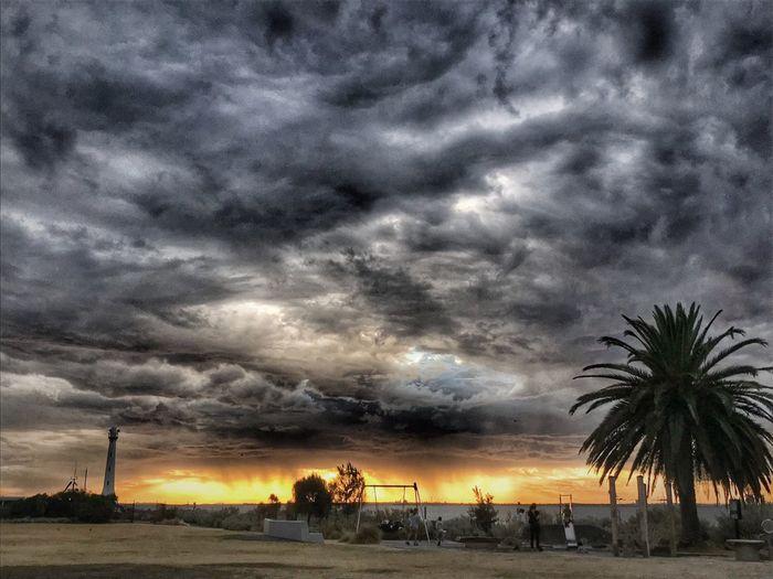 Sky Cloud - Sky Tree Beauty In Nature Sunset Scenics - Nature Silhouette