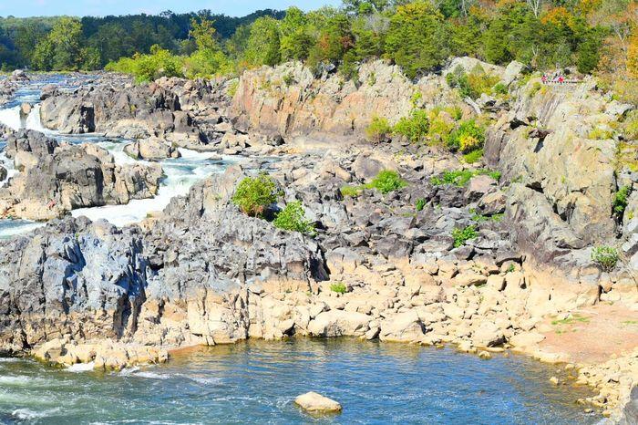Rocks Rocksandwater Waterlevel River Greatfalls Virginia Nature EyeEm Nature Lover EyeEm Best Shots - Nature Check This Out