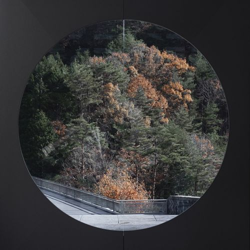 Digital composite image of trees by window in forest