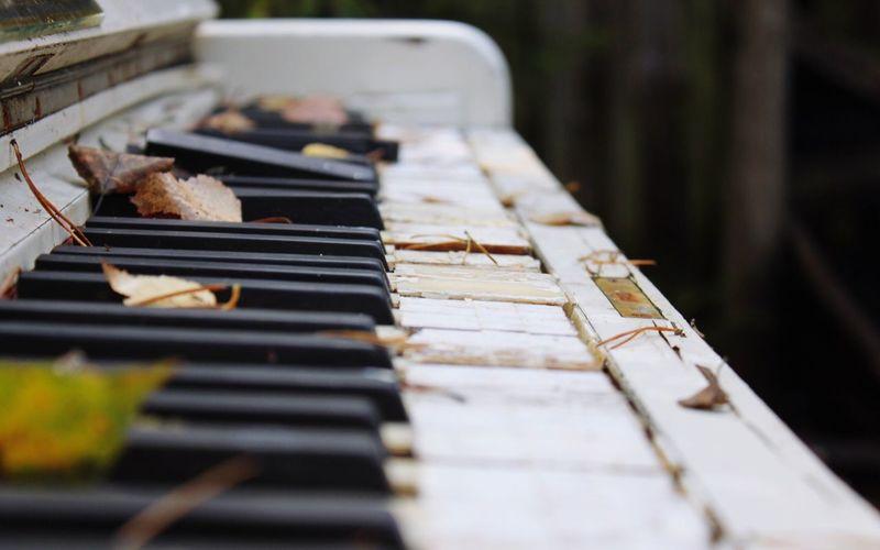 Close-up of broken piano keys