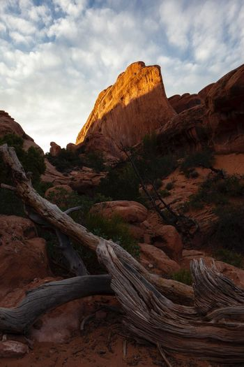 The beautiful American west Arches National Park Utah EyeEm United States Of America Setting Sun And Tree Dead Tree Trunks Rock Rock - Object Sky Scenics - Nature Beauty In Nature Rock Formation Tranquil Scene Nature No People Cloud - Sky