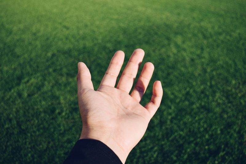 Close-up of hand against grass