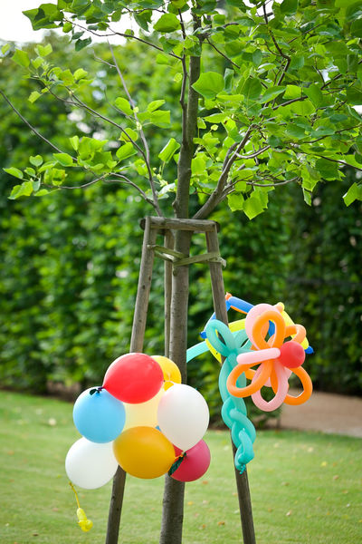 Balloon Animals  Birthday Party Birthdayparty Event Balloon Balloon Art Balloons Balloons🎈 Birthday Celebration Colorful Day Decoration Decorations Garden Green Color Hanging Kids Party Multi Colored No People Outdoors Park - Man Made Space Party - Social Event Summer Tree