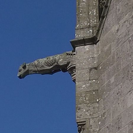 Gargouille Gargoyle Notredameduroncier Josselin Morbihan Miamorbihan Bretagne Breizh Jaimelabretagne Citémedievale Instagram Instacity Architecture Medieval Middleages Moyenage Cathedrale Eglise Cathedral Church Christian Catholic Catholique Religion Notredame bretagnetourisme