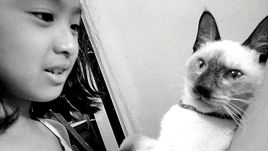EyeEm Best Shots Eyemphotography Animal Photography Siamesecats Cats Of EyeEm Black & White The Great Outdoors - 2015 EyeEm Awards EyeEm Animal Lover Eyeem Animal Lovers