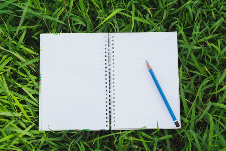 Directly above shot of blank spiral notebook and pencil on grass