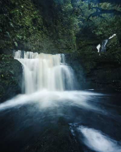Beauty In Nature Blurred Motion Catlins Day Environment Flowing Flowing Water Forest Land Long Exposure Motion Nature No People Outdoors Plant Power In Nature Rainforest Rock Rock - Object Scenics - Nature Tree Water Waterfall