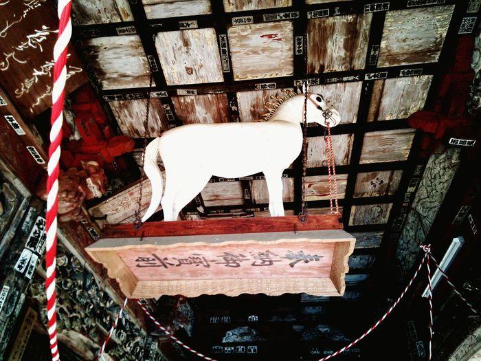 お仕置きを受ける馬 punished horse Japanese Temple Japanese Traditional Horse Saitama , Japan 寺 左甚五郎