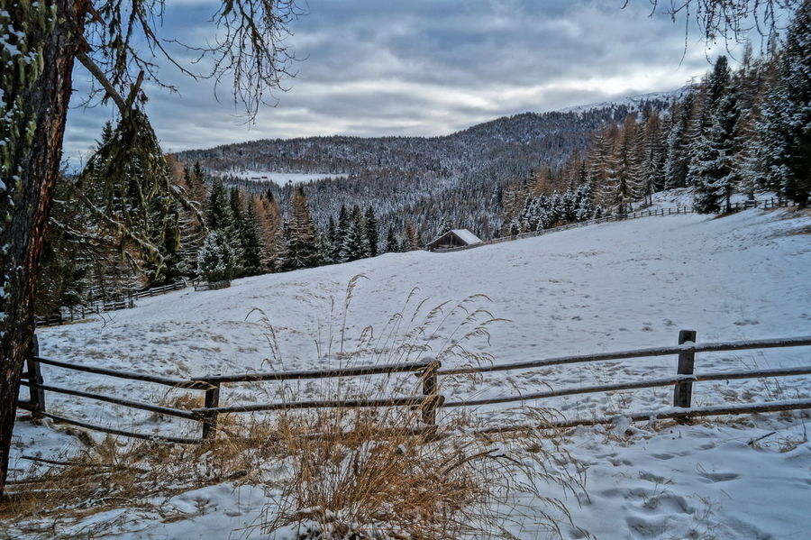 Hello World Taking Photos Enjoying Life Südtirol Winter Landscapes With WhiteWall