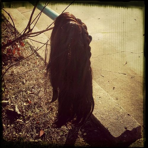 I guess someone thought it was easier to run their hair(wig) thru the car wash and air dry on this limb. Maybe if only they hadnt forgot to take it home .