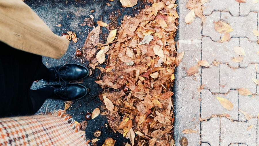 One Person High Angle View One Woman Only Adult People Horizontal Human Body Part Outdoors Nature Real People Only Women Person Day Close-up One Young Woman Only Standing Rain Human Foot Shoe Vertical Berlin Autumn Leaves