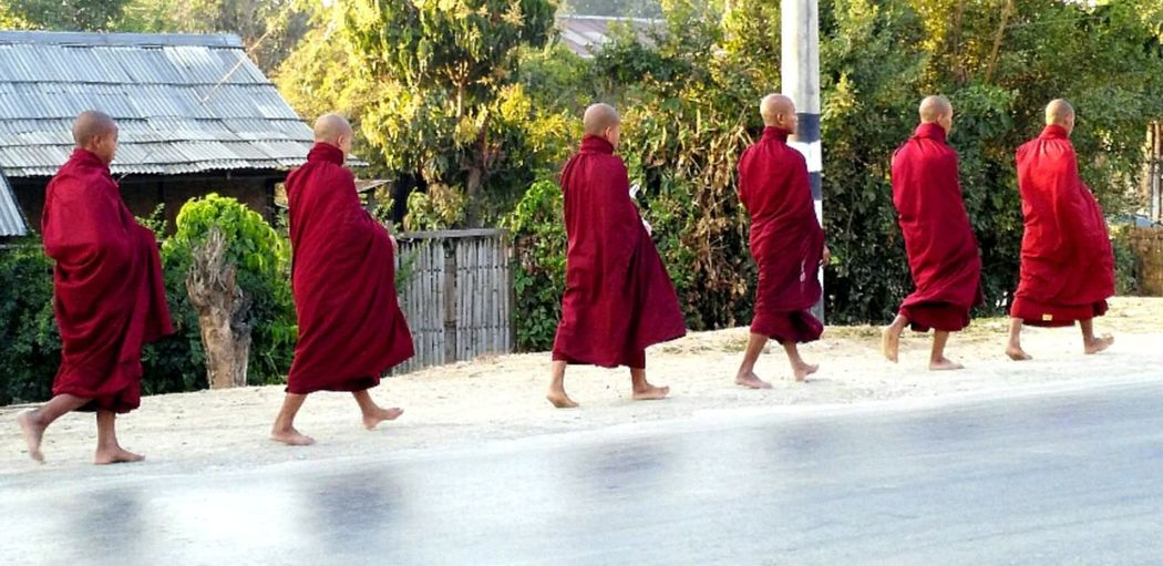 Myanmar Red Real People Lifestyles People Men Rural Scene Spirituality Low Angle View Religion History Travel Destinations Monks In Burma Monks In Motion Monks Walk Monks Monks Walking Myanmar.