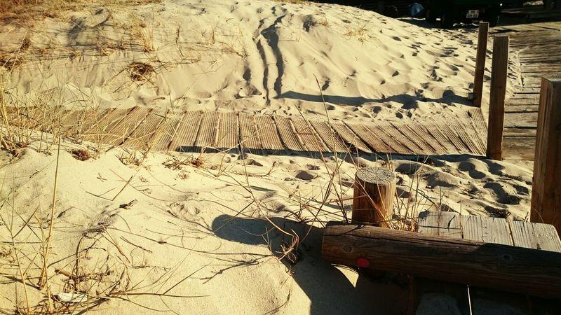 Escaping Sandcastles Seaside Sand Dunes