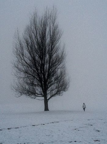 Winter Black & White Walking Around Freezing ❄ Snow ❄