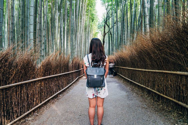 Rear View Of Woman Standing On Footpath In Forest