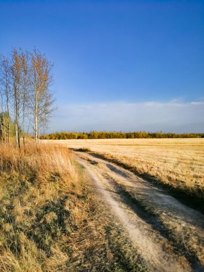 Dirt road amidst field against blue sky
