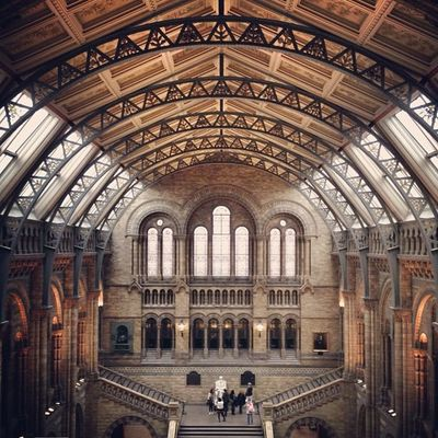 Beautiful Main Hall of Natural History #museum ??? #alan_in_london #buildings #contestgram #gf_uk #gf_daily #gang_family #gramoftheday #lom_tgs #insta_uk #insta_london #instalovers_uk #inboxzero #jj #london #londonpop #london_only #history #printic #shoot Insta_uk London_only Gramoftheday Gf_uk Museum Alan_in_london Insta_london London Worldwidephotowalk History Thisislondon Buildings Inboxzero Shootermag Kewikihighlight_bestsofar Gang_family Instalovers_uk Gf_daily Jj  Touristlondon Contestgram Gi_uk Londonpop Lom_tgs Printic