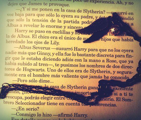 El hombre mas valiente. Severus Snape Harry Potter And The Deathly Allows Harry Potter ⚡ Albus Severous Potter Photographic Memory