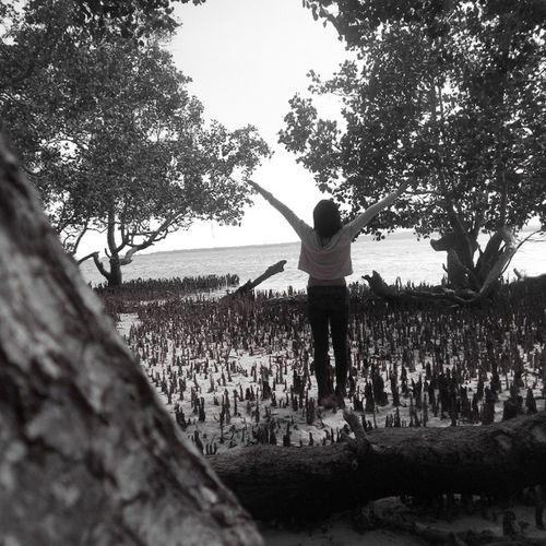 salamat sa aking camera dahil meron kang timer :) Freedom Mylife Mystory Emo peg feeling free beach palawan mangrooves