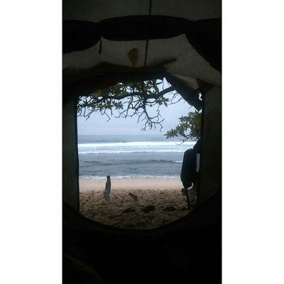 Morning//Vibes Magic Tend Wakemeup Gethigh Pulaupenyu Windowofuniverse Horizons
